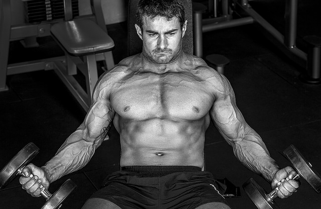 Bodybuilding - Daniel Sallai - FlickR.com